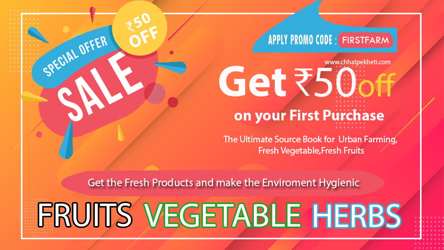 Coupon Code for Organic Vegetable Seeds